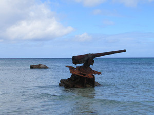 Canon Vestiges from WWII - Maloelap Atoll